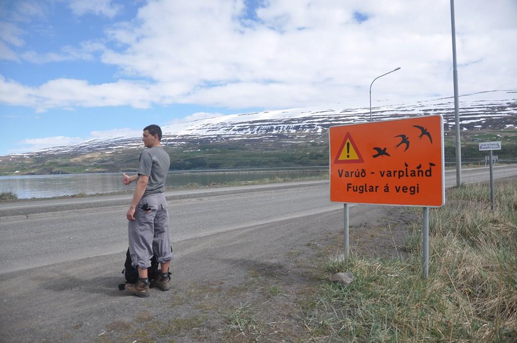10:25. Ruszamy w trasę. Zamierzamy dotrzeć do jeziora Myvatn, jedynie 90 km od Akureyri.