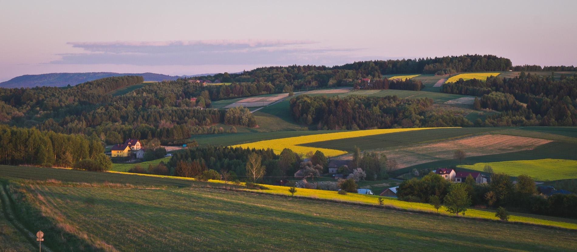 9 ciekawych miejsc w okolicy Rzeszowa. Co można odkryć do 50 km od domu?