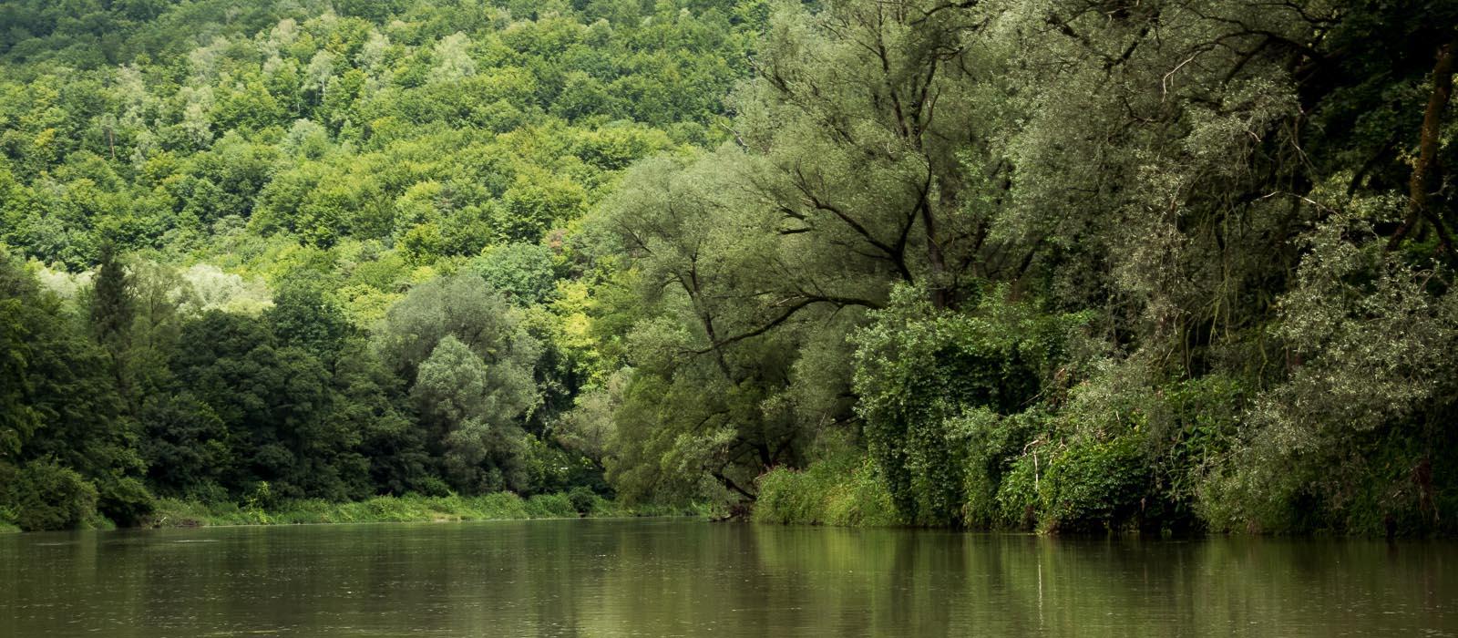 Зроби це Сан! 13 раритетів найкрасивішої річки Підкарпаття