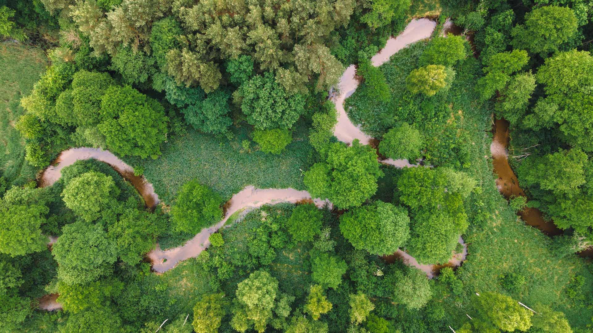 Rzeka Biała Przemsza ≋ jednodniowy spływ kajakowy, trasa, relacja ≋