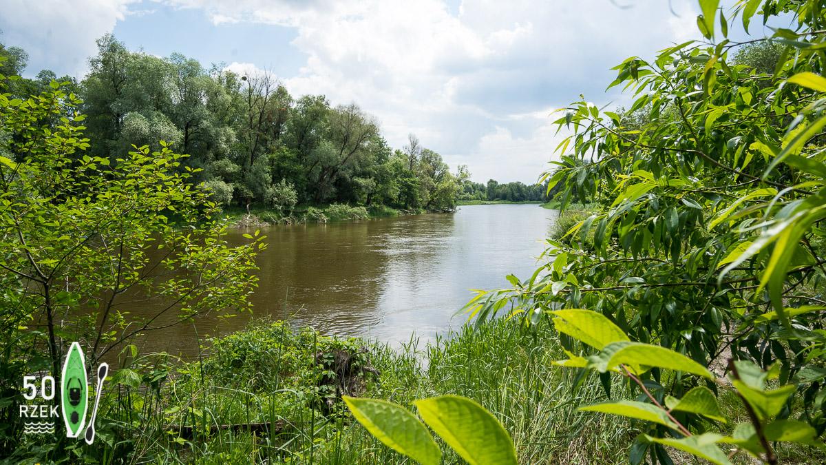 Rzeka Bug ≋ jednodniowy spływ kajakowy, trasa, relacja ≋