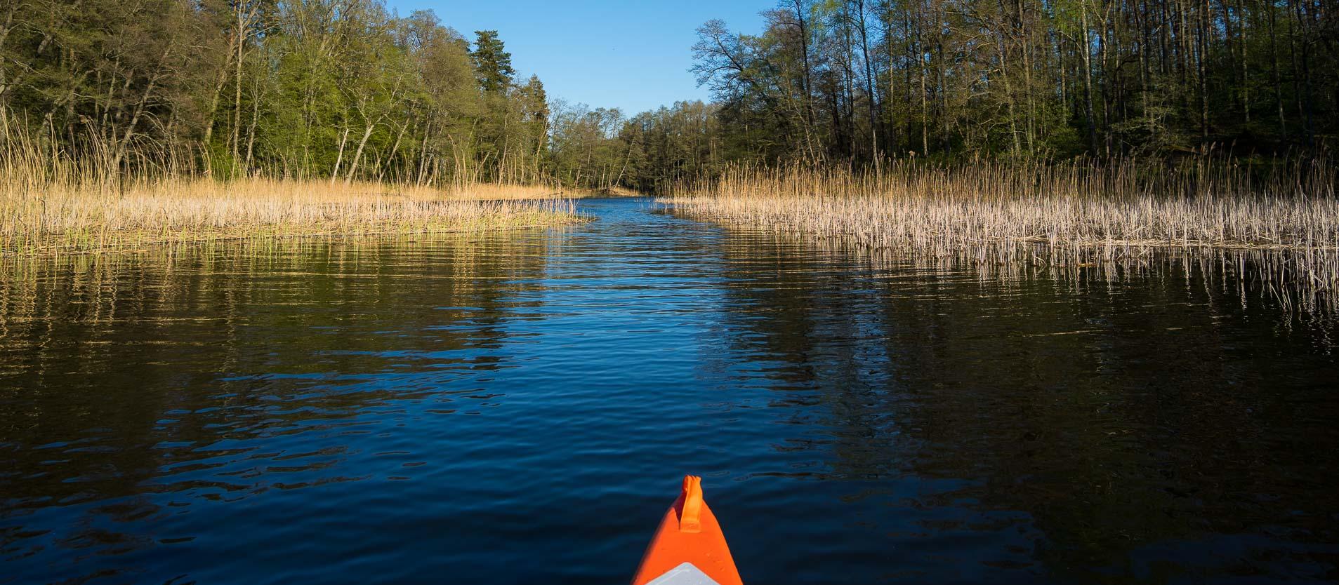 Rzeka Krutynia ≋ jednodniowy spływ kajakowy, trasa, relacja ≋