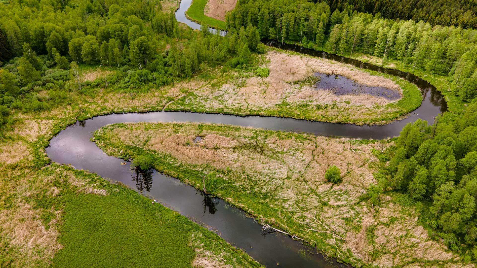 Rzeka Łyna ≋ jednodniowy spływ kajakowy, trasa, relacja ≋