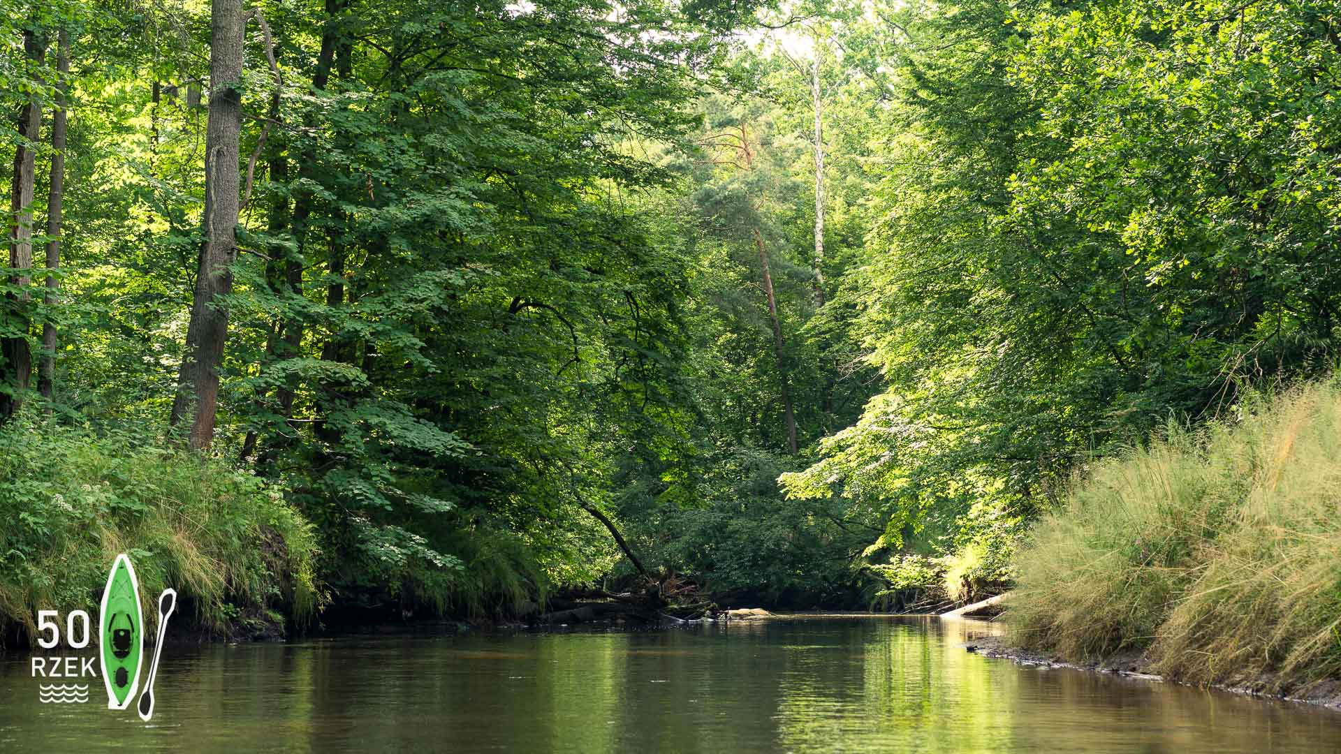 Rzeka Mała Panew ≋ jednodniowy spływ kajakowy, trasa, relacja ≋