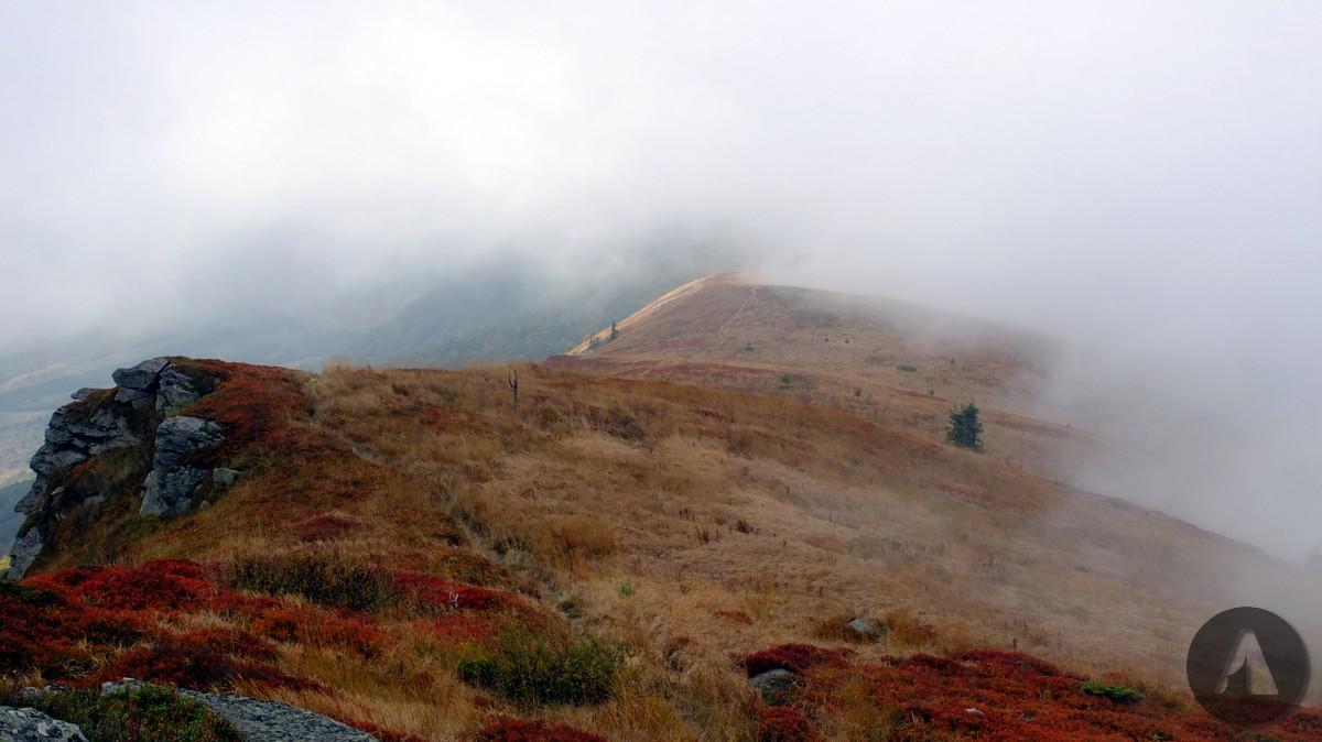 polonina mgla