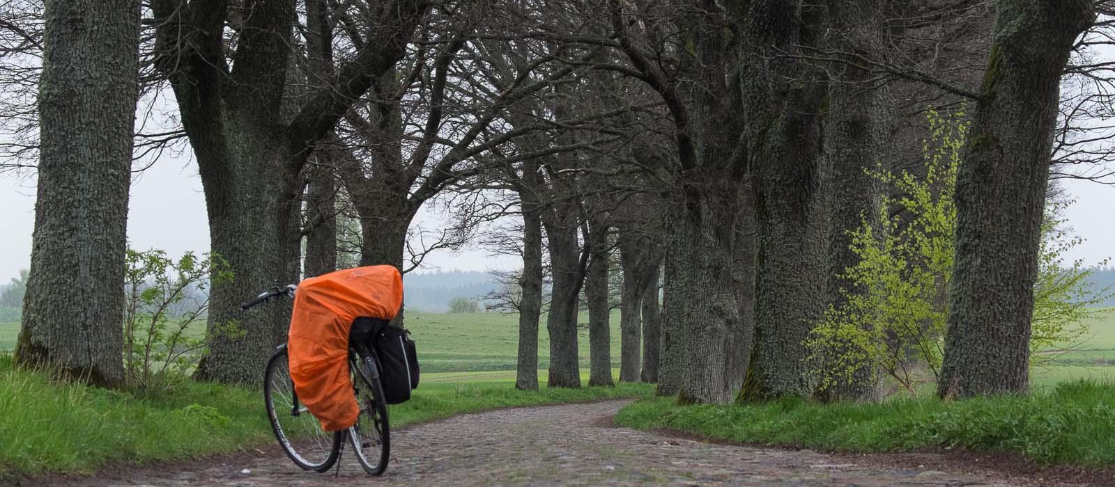 Jaki rower do podróży wybrać?
