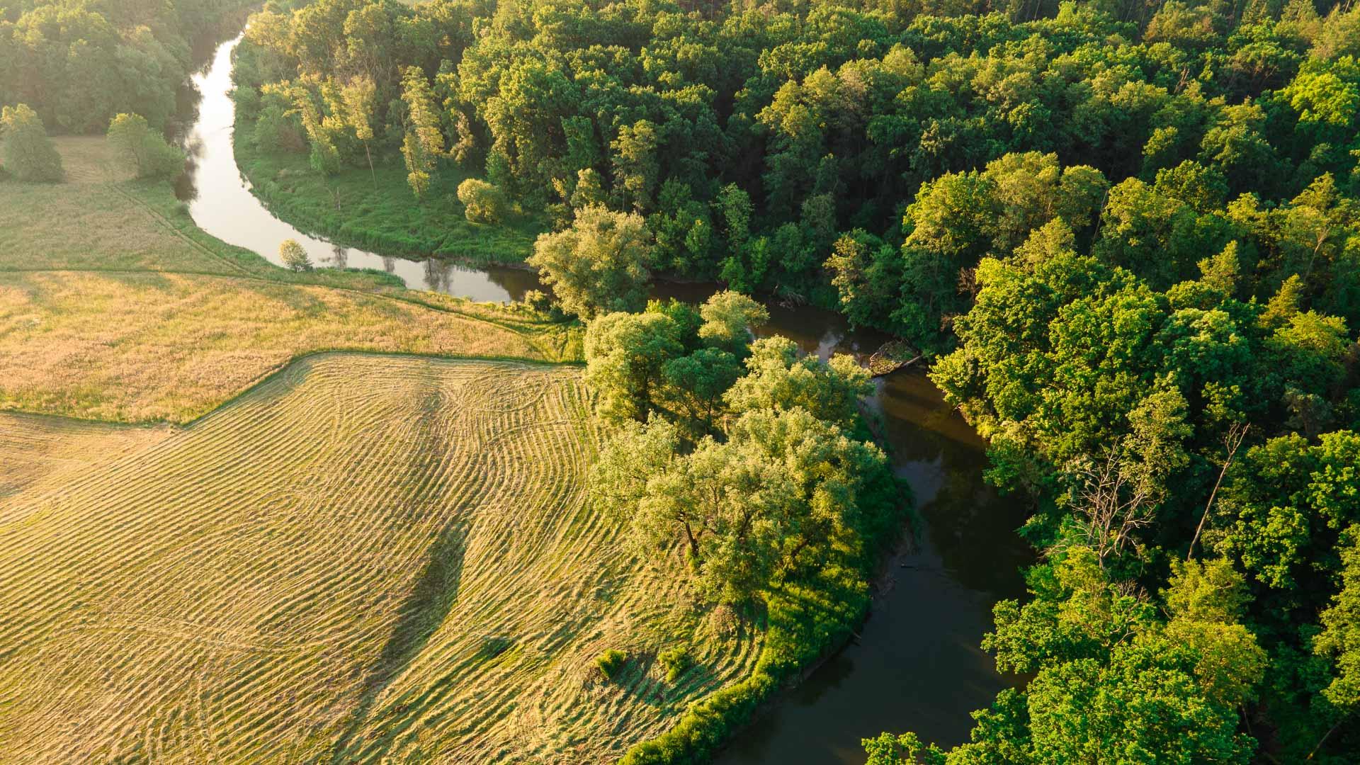 Rzeka Wieprz ≋ jednodniowy spływ kajakowy, trasa, relacja ≋