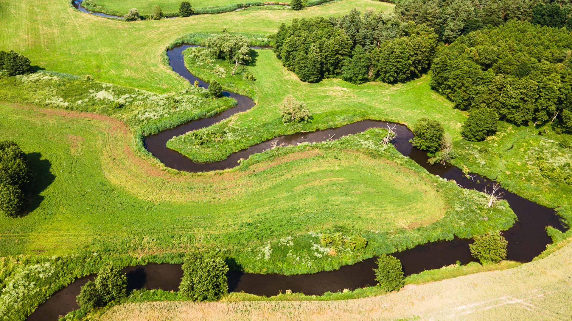Rzeka Wierzyca ≋ jednodniowy spływ kajakowy, trasa, relacja ≋